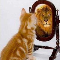 Оцените Ваш уровень самооценки