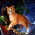 Новости Ученого кота, или Большое Путешествие  Часть IV