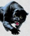 Прыжок Пантеры