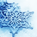 Коллекция Зима-2013